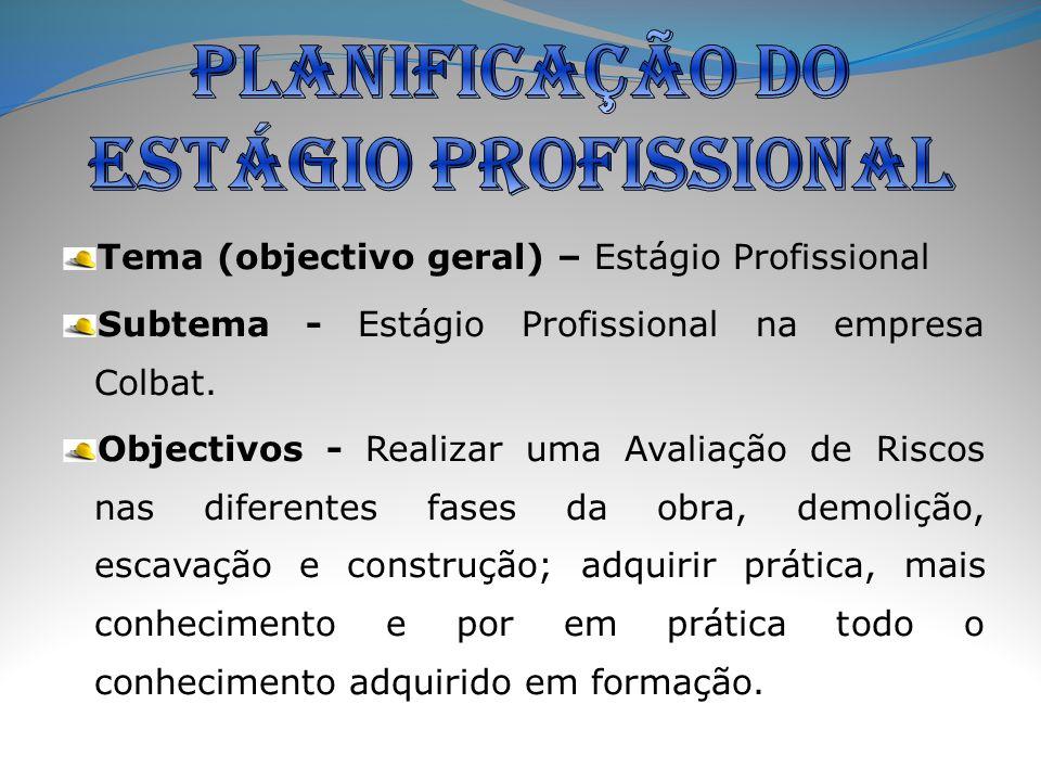 Tema (objectivo geral) – Estágio Profissional Subtema - Estágio Profissional na empresa Colbat.