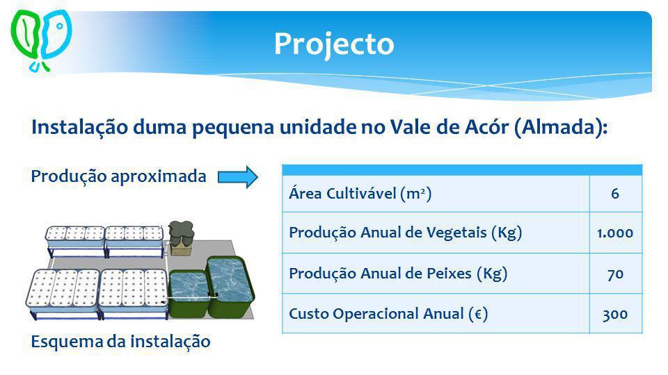 Área Cultivável (m 2 )6 Produção Anual de Vegetais (Kg)1.000 Produção Anual de Peixes (Kg)70 Custo Operacional Anual ()300 Projecto Instalação duma pequena unidade no Vale de Acór (Almada): Produção aproximada Esquema da instalação