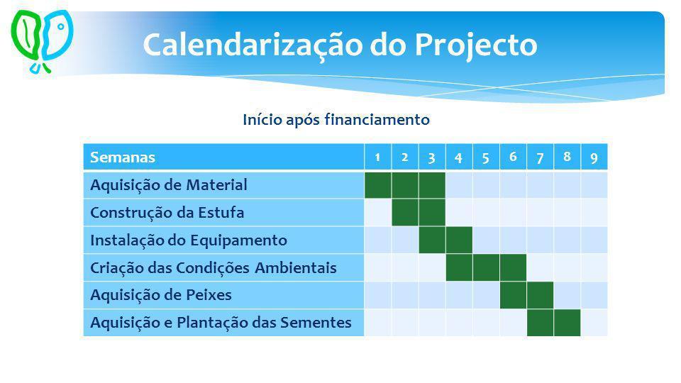 Calendarização do Projecto Semanas 123456789 Aquisição de Material Construção da Estufa Instalação do Equipamento Criação das Condições Ambientais Aquisição de Peixes Aquisição e Plantação das Sementes Início após financiamento