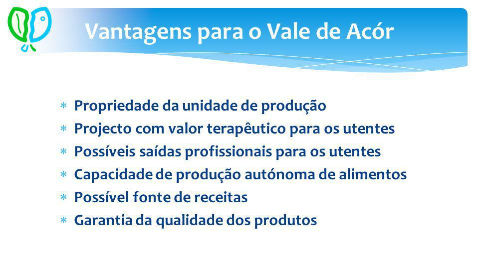 Propriedade da unidade de produção Projecto com valor terapêutico para os utentes Possíveis saídas profissionais para os utentes Capacidade de produçã