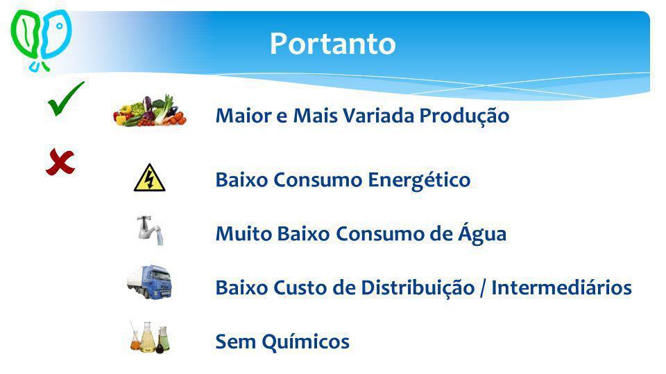 Portanto Maior e Mais Variada Produção Baixo Consumo Energético Sem Químicos Baixo Custo de Distribuição / Intermediários Muito Baixo Consumo de Água