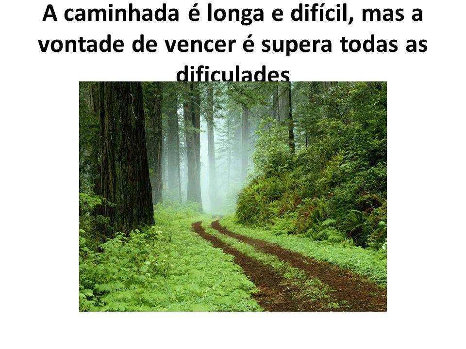 A caminhada é longa e difícil, mas a vontade de vencer é supera todas as dificulades