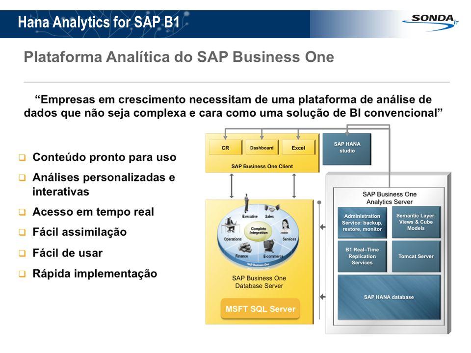 7 Hana Analytics for SAP B1