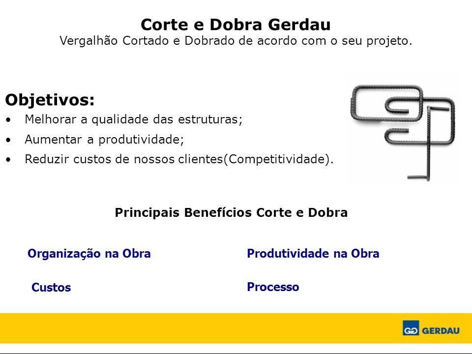 Passarela/Estação Lagoinha – Belo Horizonte/MG Mobilidade Urbana Pontes, Passarelas, Viadutos Terminais de Passageiros