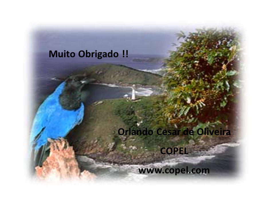 Muito Obrigado !! Orlando Cesar de Oliveira COPEL www.copel.com