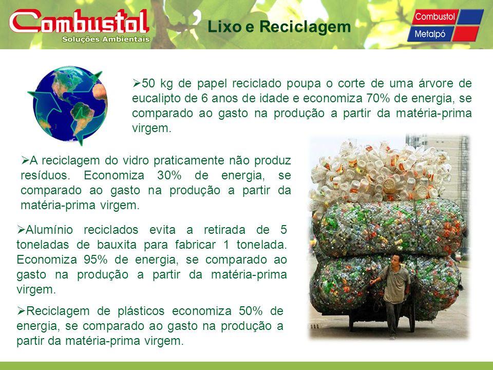 Lixo e Reciclagem 50 kg de papel reciclado poupa o corte de uma árvore de eucalipto de 6 anos de idade e economiza 70% de energia, se comparado ao gas