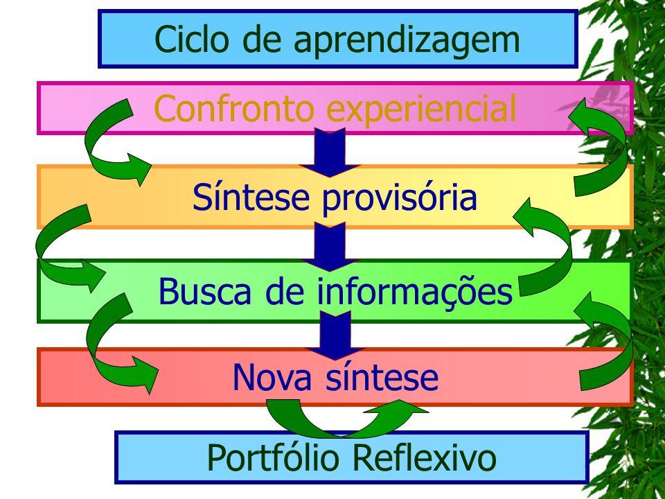 Confronto experiencial Ciclo de aprendizagem Síntese provisória Busca de informações Nova síntese Portfólio Reflexivo
