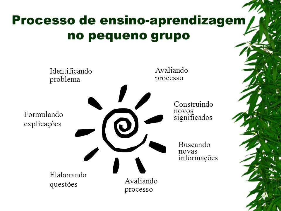 Processo de ensino-aprendizagem no pequeno grupo Identificando problema Formulando explicações Elaborando questões Avaliando processo Buscando novas i