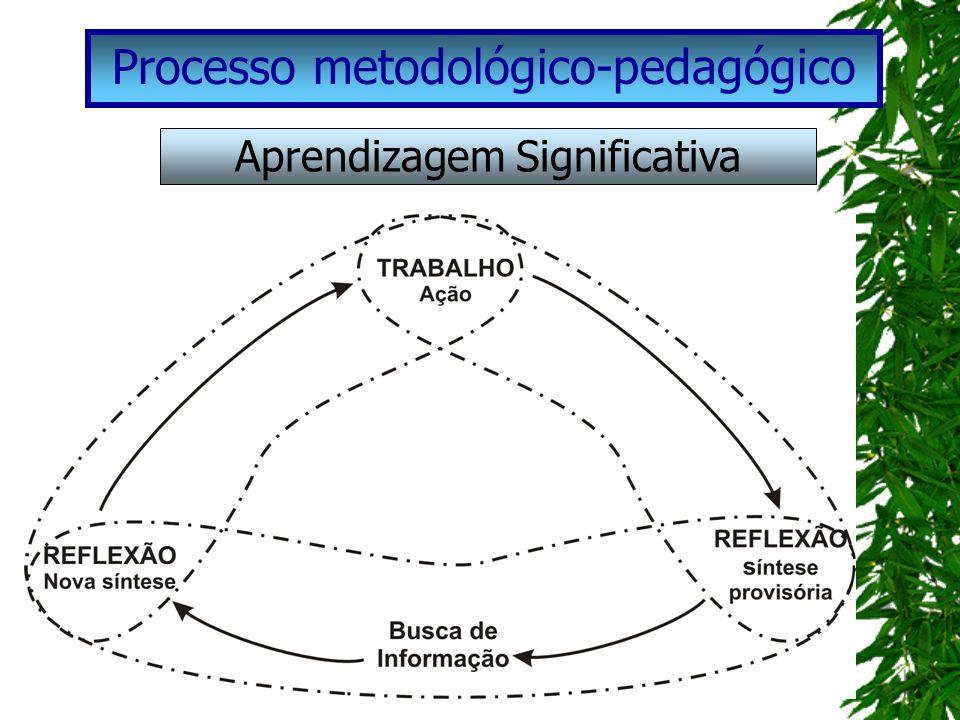 Processo metodológico-pedagógico Aprendizagem Significativa