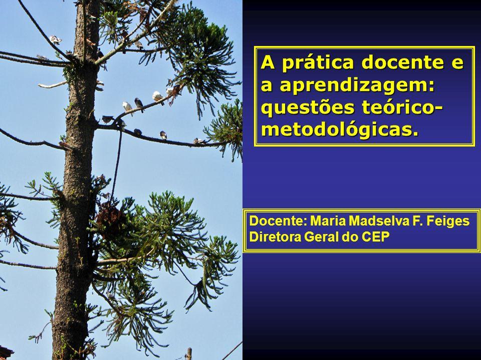 A prática docente e a aprendizagem: questões teórico- metodológicas. Docente: Maria Madselva F. Feiges Diretora Geral do CEP