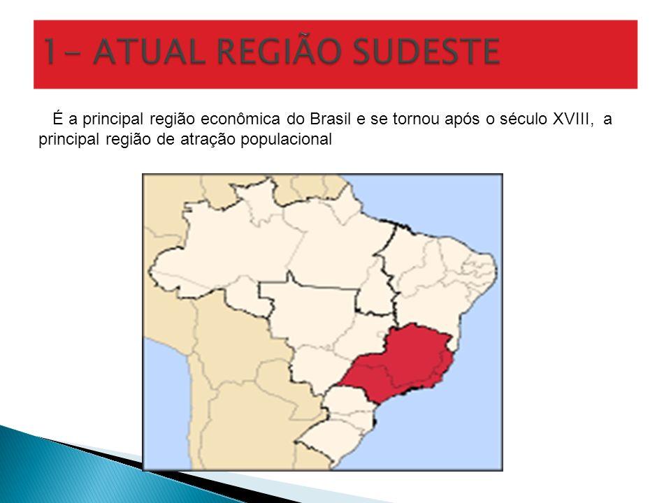 É a principal região econômica do Brasil e se tornou após o século XVIII, a principal região de atração populacional