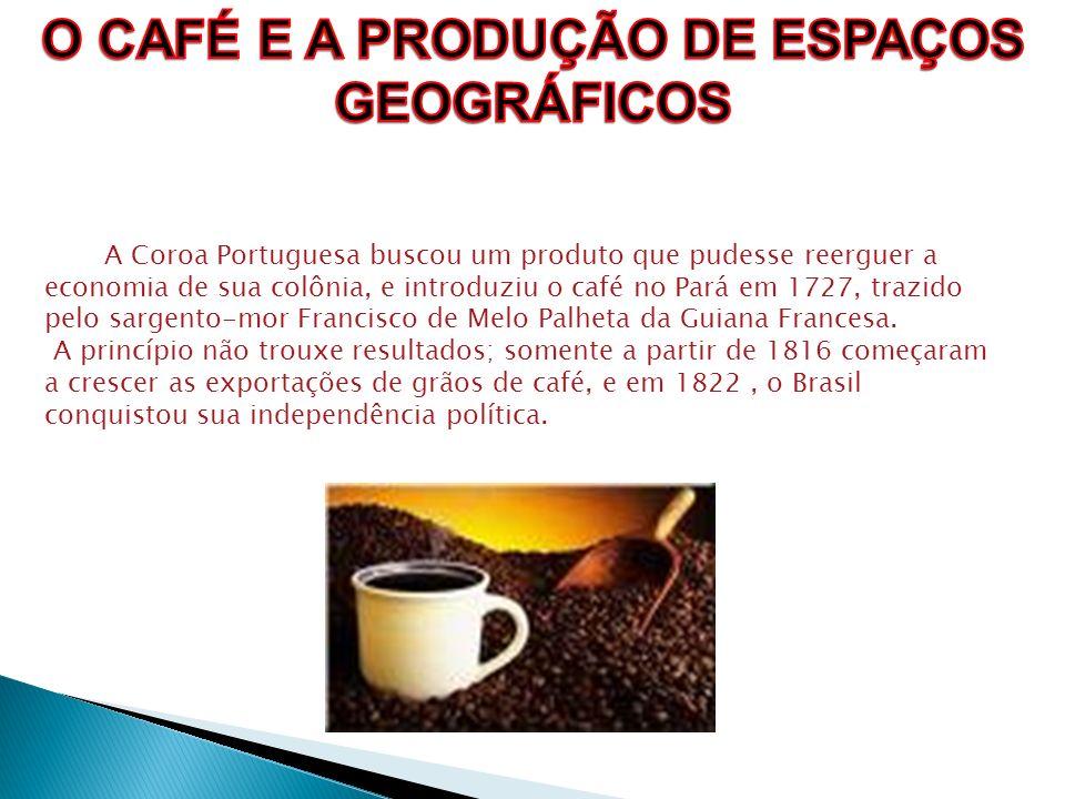 A Coroa Portuguesa buscou um produto que pudesse reerguer a economia de sua colônia, e introduziu o café no Pará em 1727, trazido pelo sargento-mor Fr
