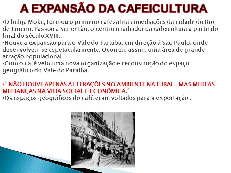 O belga Moke, formou o primeiro cafezal nas imediações da cidade do Rio de Janeiro. Passou a ser então, o centro irradiador da cafeicultura a partir d
