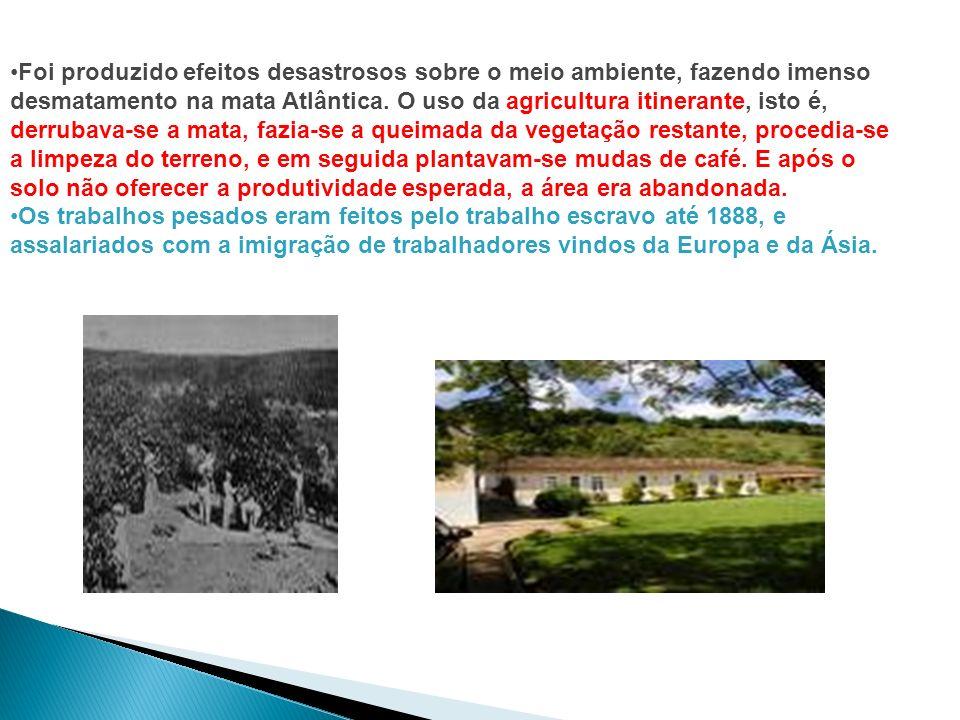 A expansão da cafeicultura em direção ao interior de São Paulo Ao expandir-se para o interior da província de São Paulo, a cafeicultura ocupou terras do Planalto Ocidental Paulista.