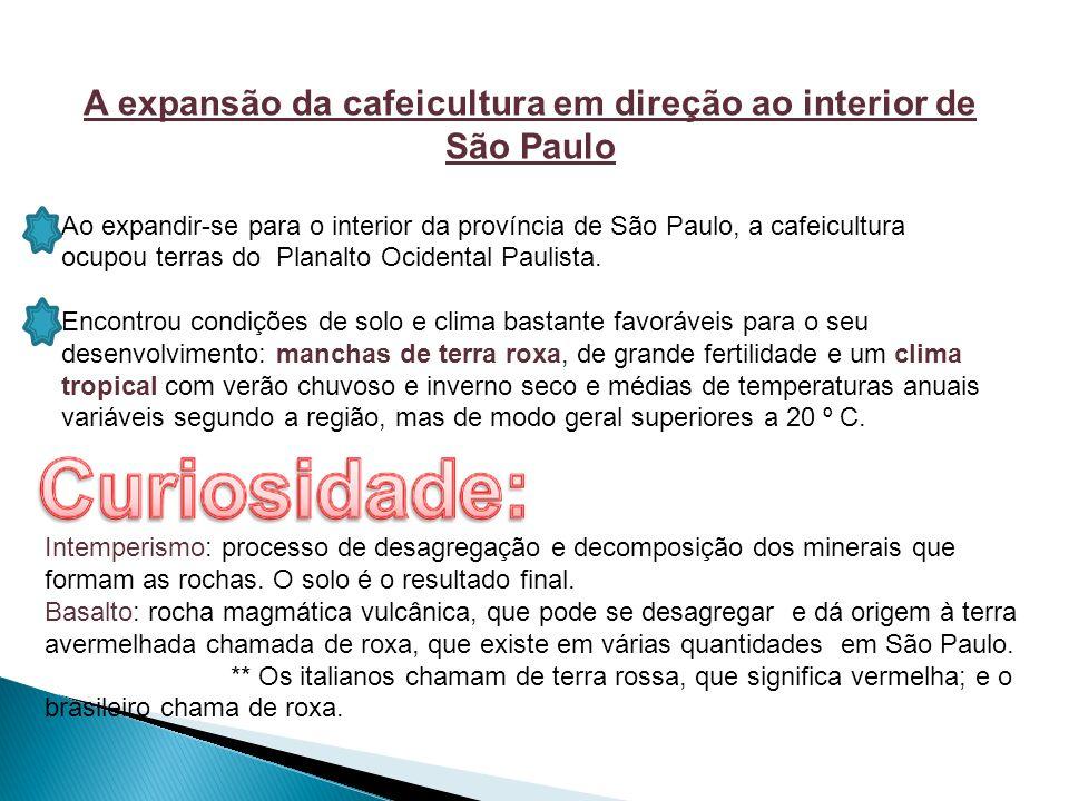A expansão da cafeicultura em direção ao interior de São Paulo Ao expandir-se para o interior da província de São Paulo, a cafeicultura ocupou terras