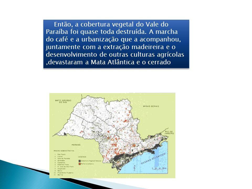 Então, a cobertura vegetal do Vale do Paraíba foi quase toda destruída. A marcha do café e a urbanização que a acompanhou, juntamente com a extração m