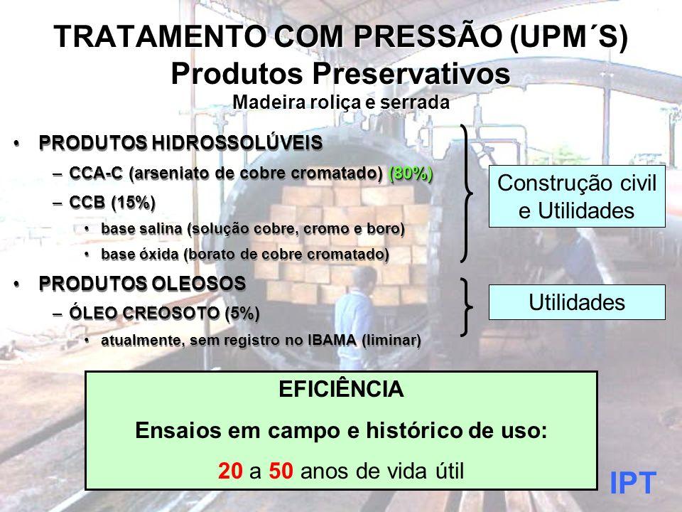 IPT brazolin@ipt.br fone: (11) 3767-4533 fax: (11) 3767-4098
