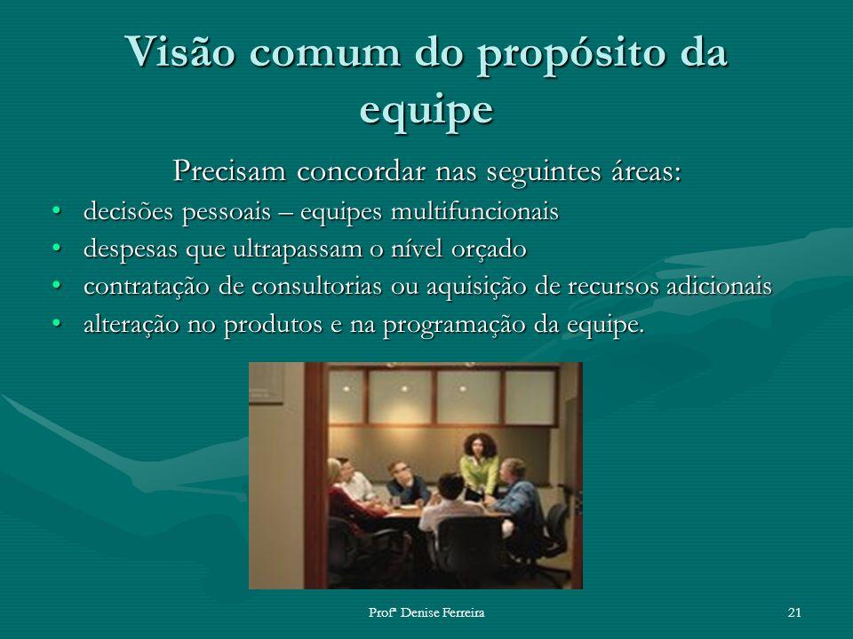 Profª Denise Ferreira21 Visão comum do propósito da equipe Precisam concordar nas seguintes áreas: decisões pessoais – equipes multifuncionaisdecisões