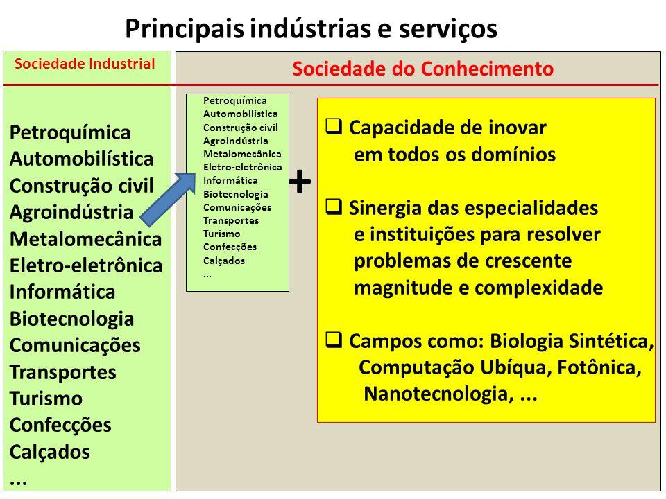 Sociedade Industrial Petroquímica Automobilística Construção civil Agroindústria Metalomecânica Eletro-eletrônica Informática Biotecnologia Comunicaçõ