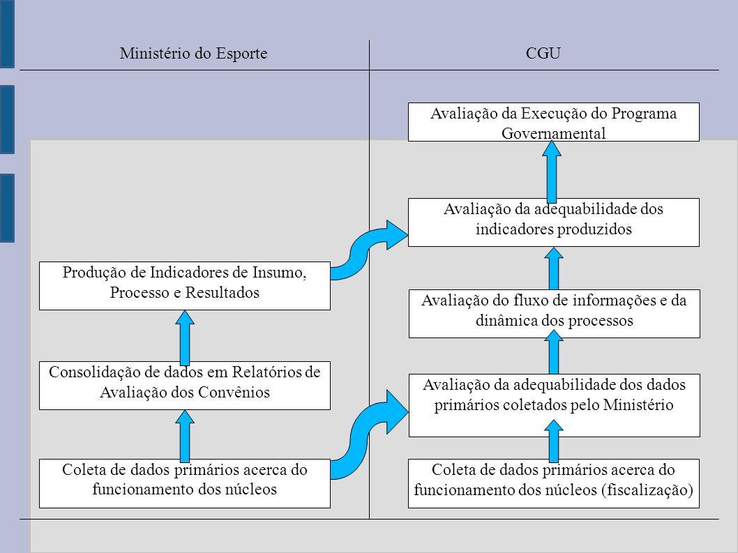 Coleta de dados primários acerca do funcionamento dos núcleos Coleta de dados primários acerca do funcionamento dos núcleos (fiscalização) Consolidaçã
