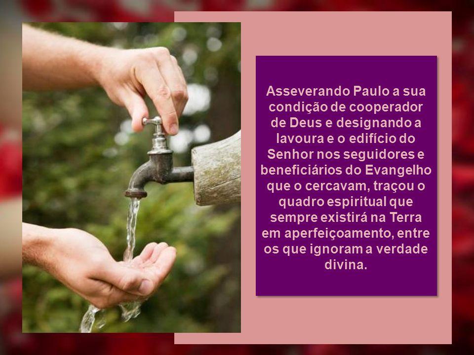 SEMENTEIRA E CONSTRUÇÃO...porque nós somos cooperadores de Deus; vós sois lavoura de Deus e edifício de Deus... Paulo (I Cor 3:9)