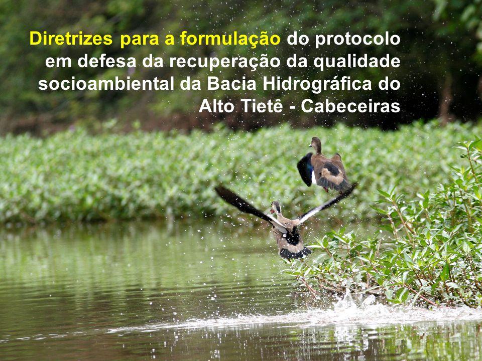 Diretrizes para a formulação do protocolo em defesa da recuperação da qualidade socioambiental da Bacia Hidrográfica do Alto Tietê - Cabeceiras