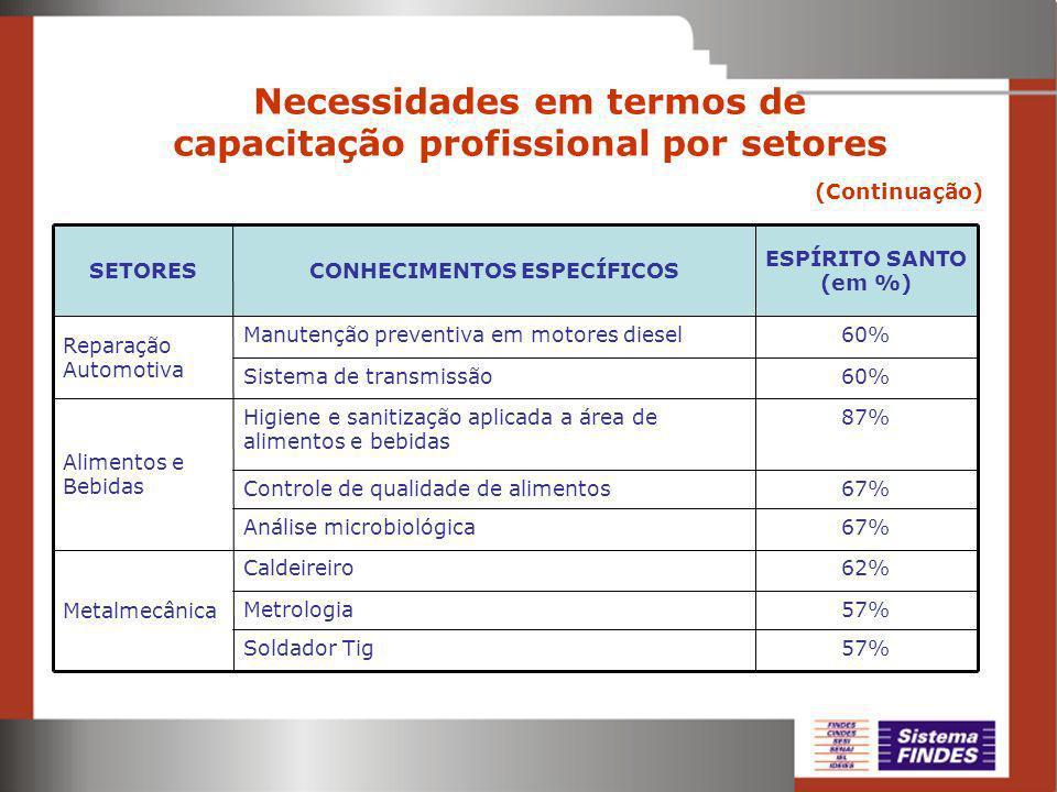 Necessidades em termos de capacitação profissional por setores (Continuação) 57% 62% 67% 87% 60% ESPÍRITO SANTO (em %) Soldador Tig Metrologia Caldeir