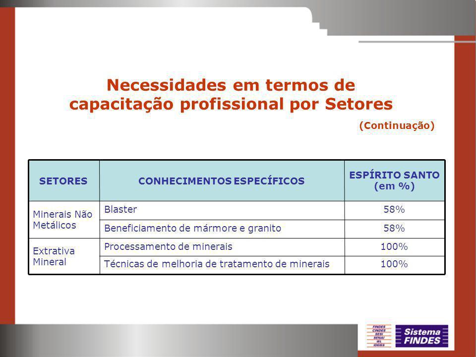 Necessidades em termos de capacitação profissional por Setores (Continuação) 100% 58% ESPÍRITO SANTO (em %) Técnicas de melhoria de tratamento de minerais Processamento de minerais Extrativa Mineral Beneficiamento de mármore e granito Blaster Minerais Não Metálicos CONHECIMENTOS ESPECÍFICOSSETORES