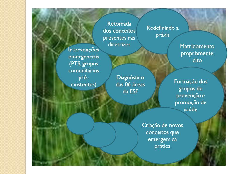 Diagnóstico das 06 áreas da ESF Intervenções emergenciais (PTS, grupos comunitários pré- existentes) Retomada dos conceitos presentes nas diretrizes R