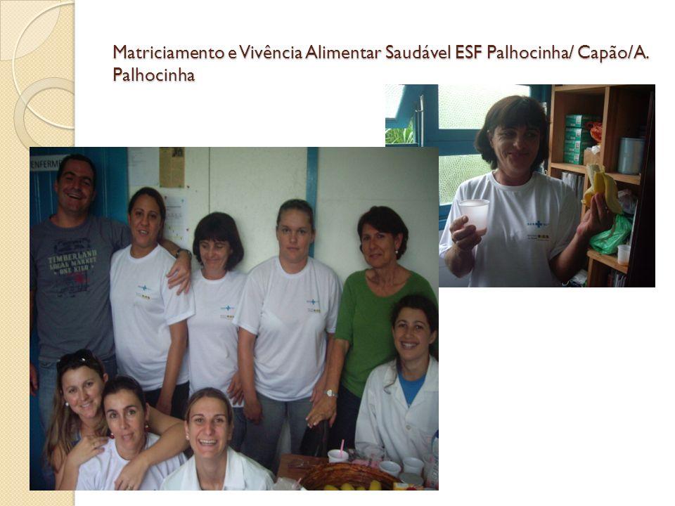 Matriciamento e Vivência Alimentar Saudável ESF Palhocinha/ Capão/A. Palhocinha