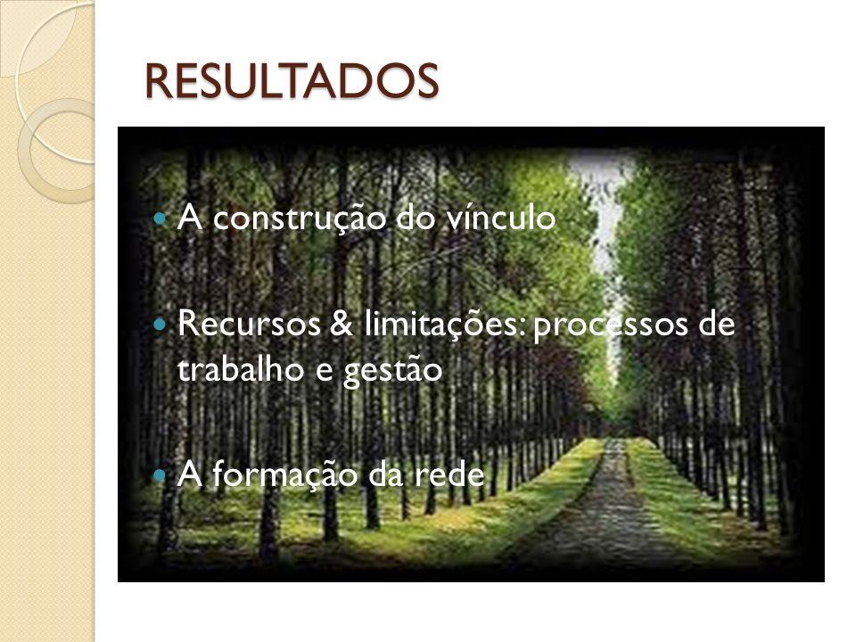 RESULTADOS A construção do vínculo Recursos & limitações: processos de trabalho e gestão A formação da rede