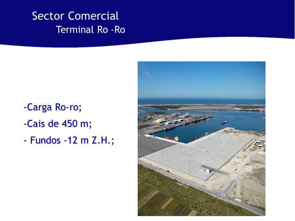 -Carga Ro-ro; -Cais de 450 m; - Fundos -12 m Z.H.; Sector Comercial –Terminal Ro -Ro