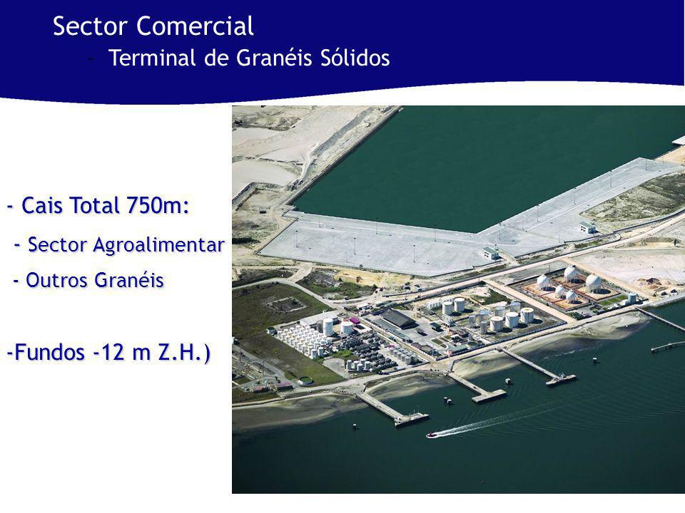 - Cais Total 750m: - Sector Agroalimentar - Sector Agroalimentar - Outros Granéis - Outros Granéis -Fundos -12 m Z.H.) Sector Comercial –Terminal de Granéis Sólidos