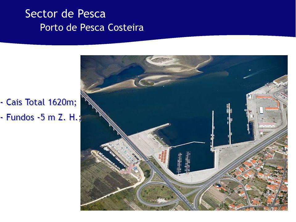 - Cais Total 1620m; - Fundos -5 m Z. H.; Sector de Pesca Porto de Pesca Costeira