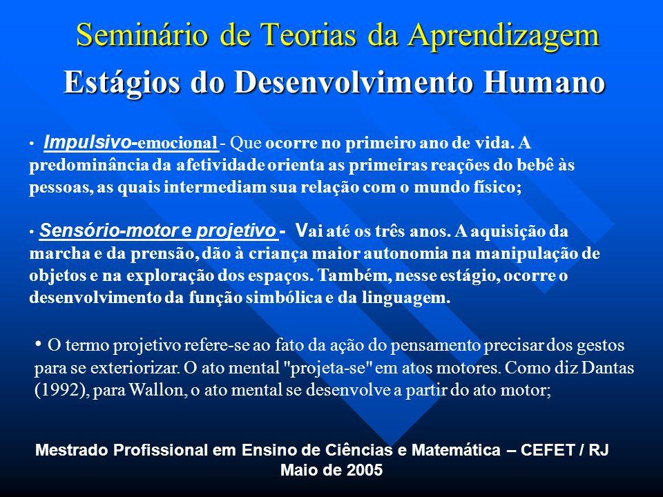 Seminário de Teorias da Aprendizagem Estágios do Desenvolvimento Humano Mestrado Profissional em Ensino de Ciências e Matemática – CEFET / RJ Maio de