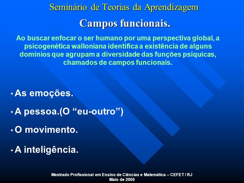 Seminário de Teorias da Aprendizagem Campos funcionais. Mestrado Profissional em Ensino de Ciências e Matemática – CEFET / RJ Maio de 2005 Ao buscar e