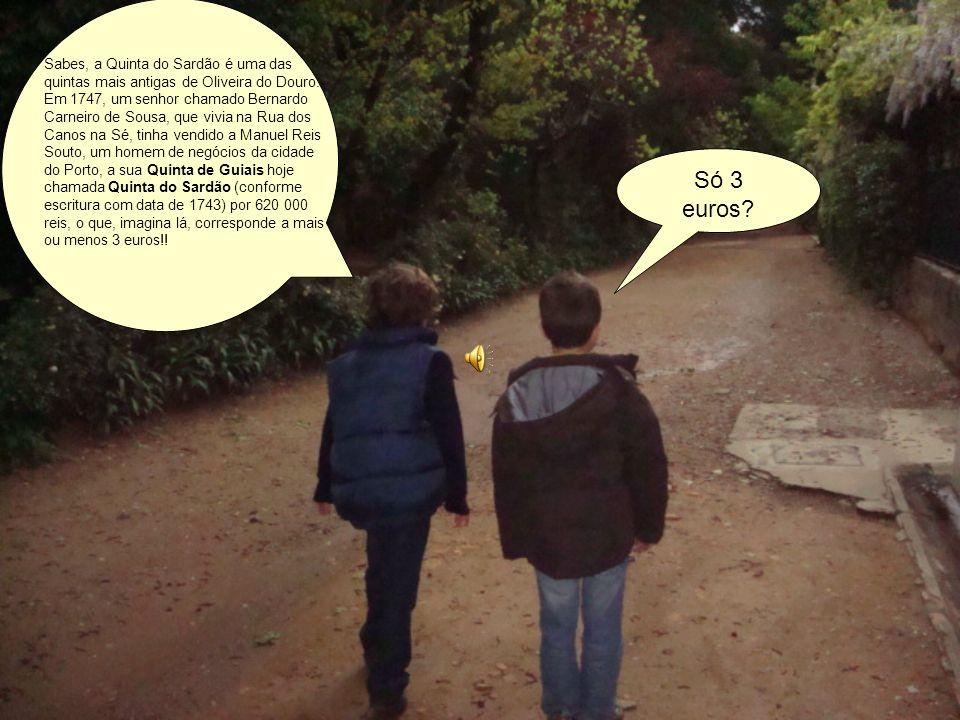 Vamos explorar a Quinta do Sardão? Excelente ideia!