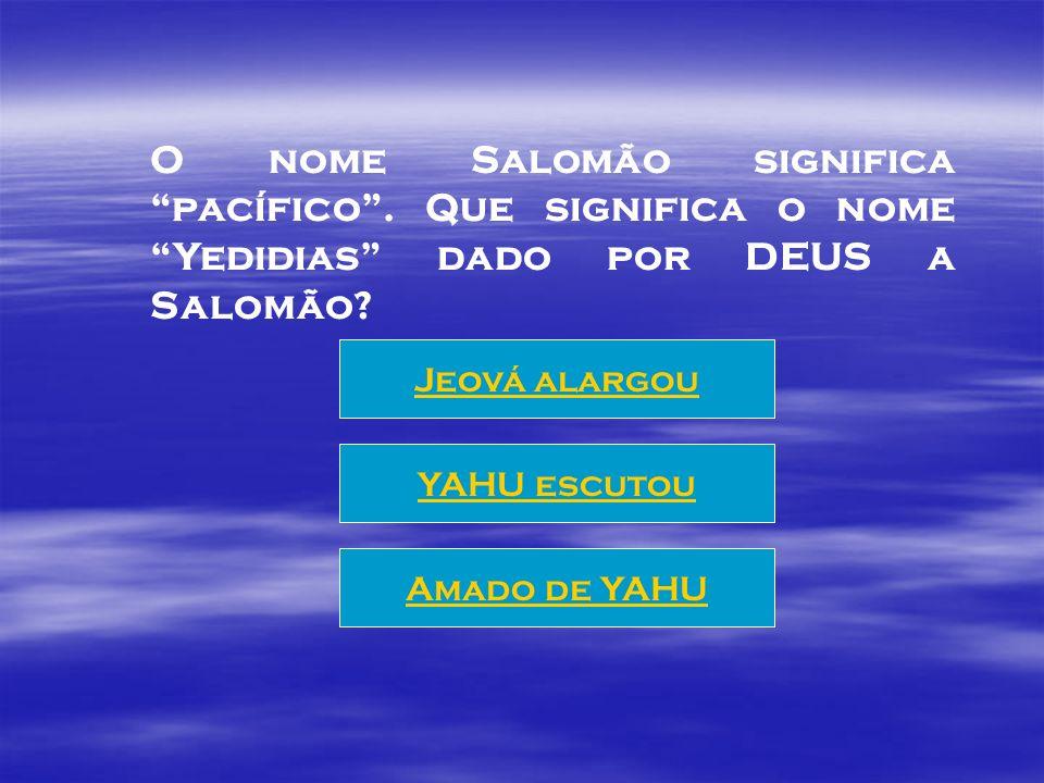 Após levar a arca para Jerusalém, e não receber de DEUS permissão para a construção do Templo, que faz o rei Davi? Preparativos para a construção Vest
