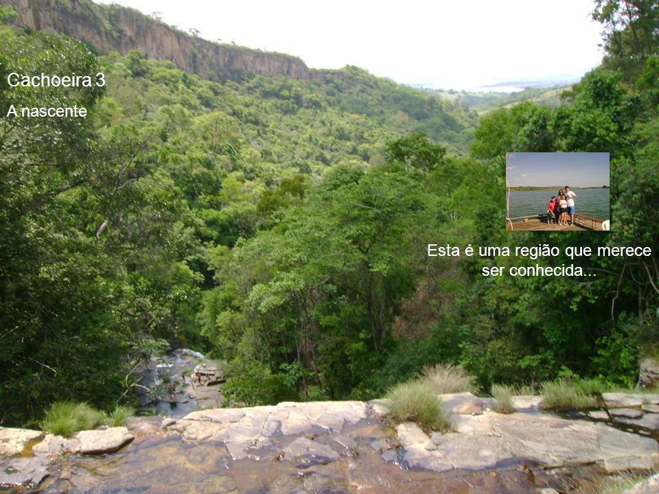 A escalada é feita em meio a uma natureza exuberante...