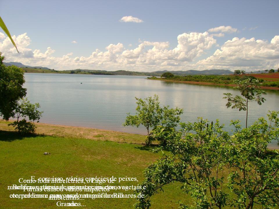 Guapé fica a 338 km da cidade de Santos Dumont G u a p é