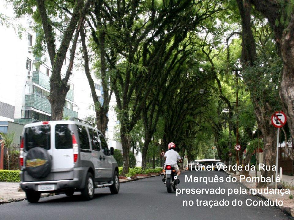 Túnel Verde da Rua Marquês do Pombal é preservado pela mudança no traçado do Conduto