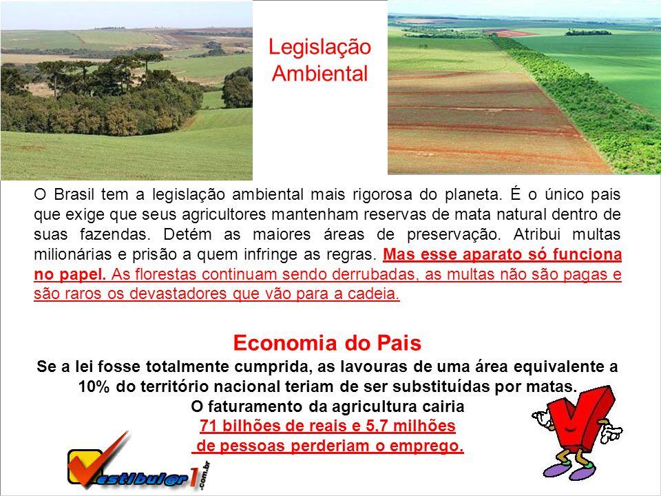 O Brasil tem a legislação ambiental mais rigorosa do planeta. É o único pais que exige que seus agricultores mantenham reservas de mata natural dentro