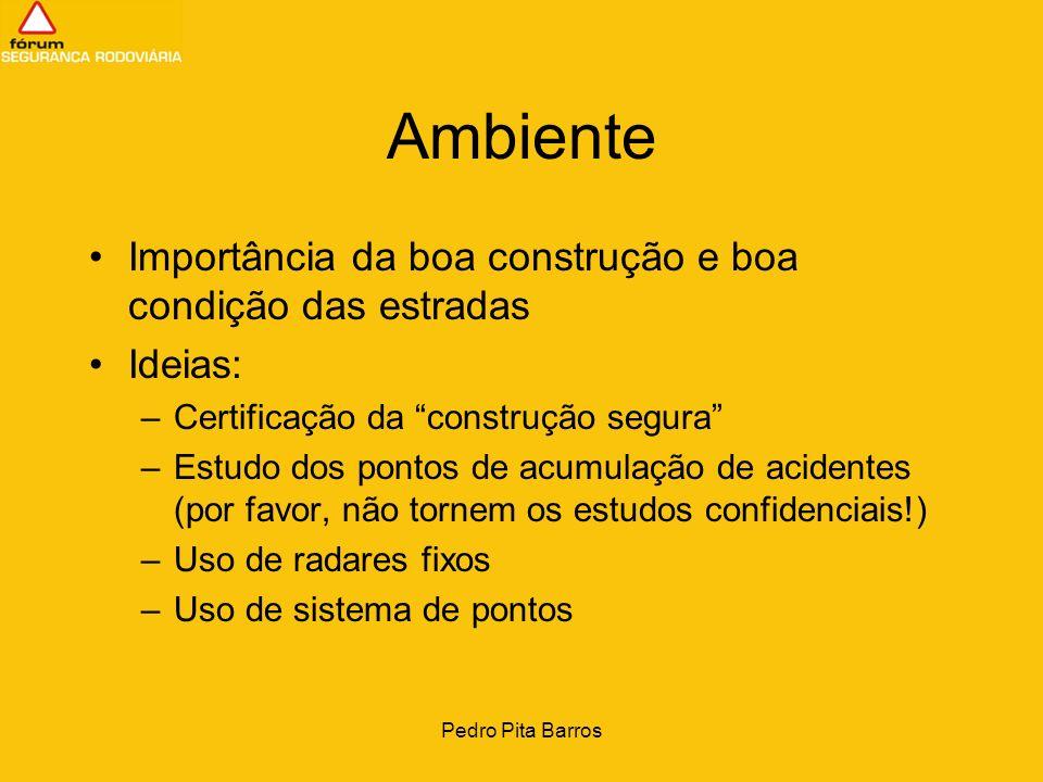 Pedro Pita Barros Ambiente Coordenação entre as diferentes entidades intervenientes –DG Viação –DG Transportes Terrestres (que me pareceu ausente do debate) –PSP e GNR –IEP –INEM