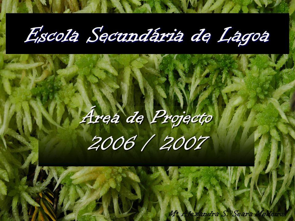 Escola Secundária de Lagoa Área de Projecto 2006 / 2007 Mª Alexandra S. Seara Medeiros