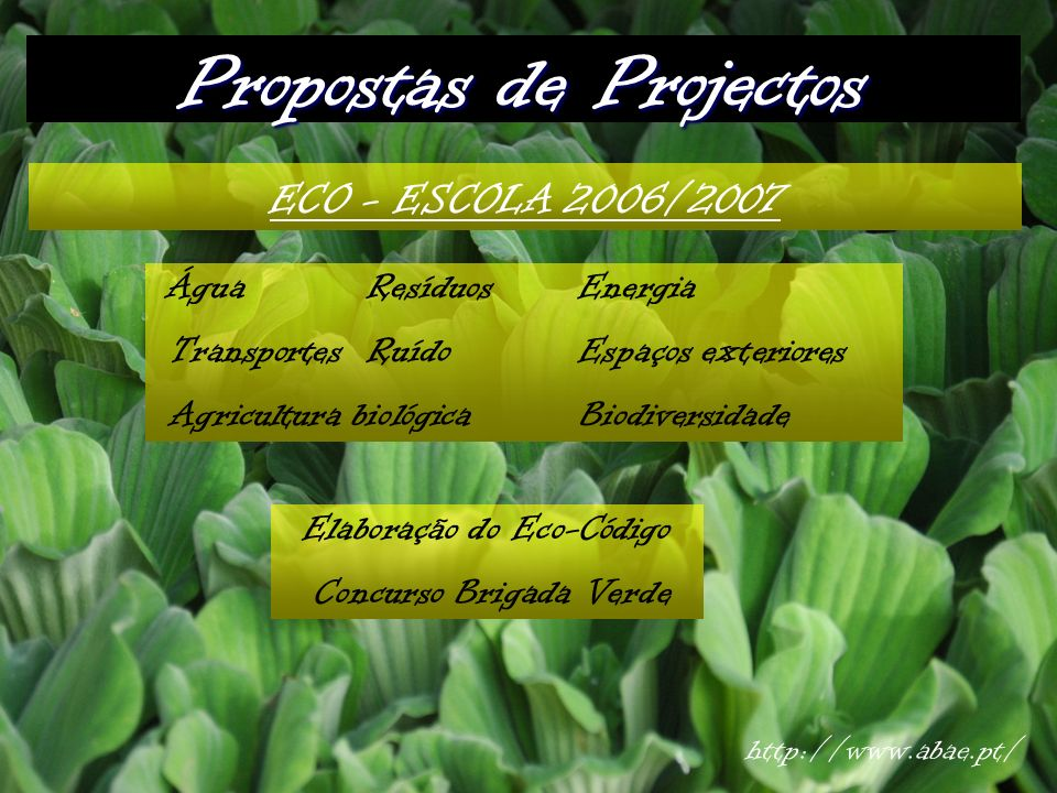Propostas de Projectos ECO - ESCOLA 2006/2007 ÁguaResíduosEnergia TransportesRuídoEspaços exteriores Agricultura biológicaBiodiversidade Elaboração do Eco-Código Concurso Brigada Verde http://www.abae.pt/