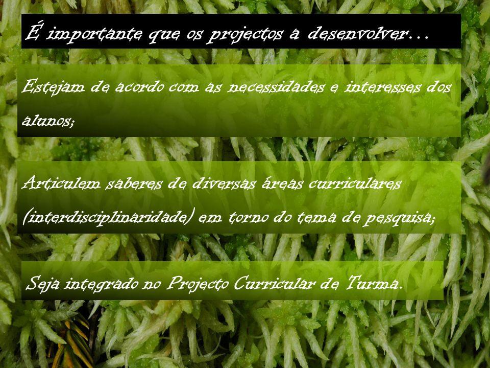 Seja integrado no Projecto Curricular de Turma.