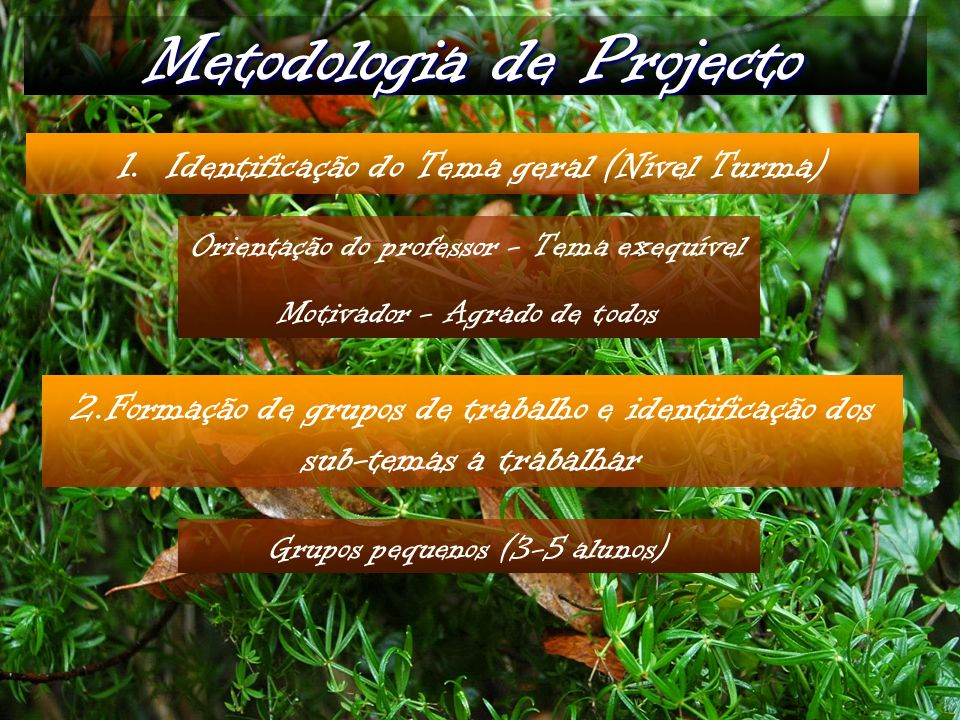 Metodologia de Projecto 1.Identificação do Tema geral (Nível Turma) Orientação do professor - Tema exequível Motivador - Agrado de todos 2.Formação de grupos de trabalho e identificação dos sub-temas a trabalhar Grupos pequenos (3-5 alunos)