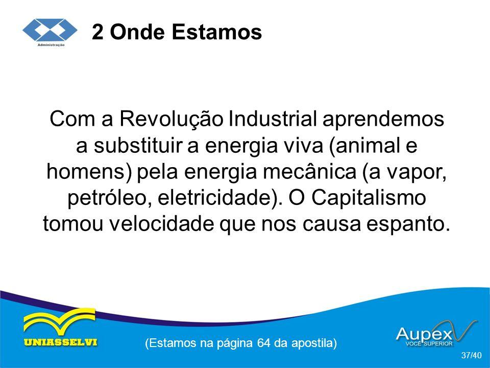 2 Onde Estamos Com a Revolução Industrial aprendemos a substituir a energia viva (animal e homens) pela energia mecânica (a vapor, petróleo, eletricidade).