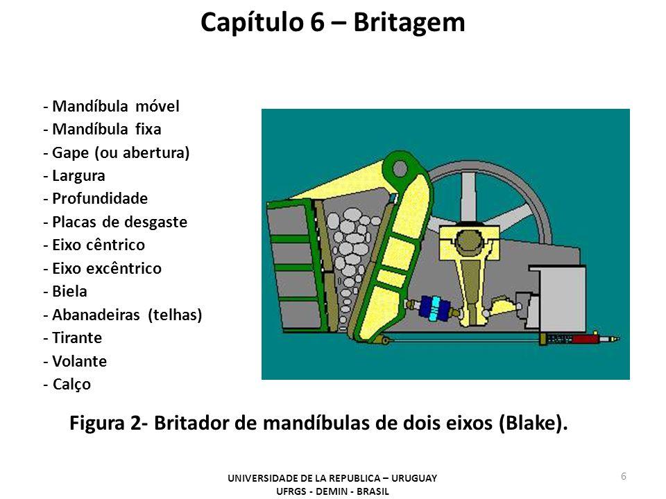 Britador de rolo dentado simples - grau de redução: 1:4 a 1:8 - capacidade: 2500 m 3 /h - top-size alimentação: 2 m - sólidos moles; média dureza - adequado para sólido úmido - Drotor: 0,5 a 2 m - Lrotor: 0,4 a 2,8 m Capítulo 6 – Britagem Figura 14- Britadores de rolos dentados (acima o de rolo simples e no detalhe a boca de carga de um de rolo duplo).