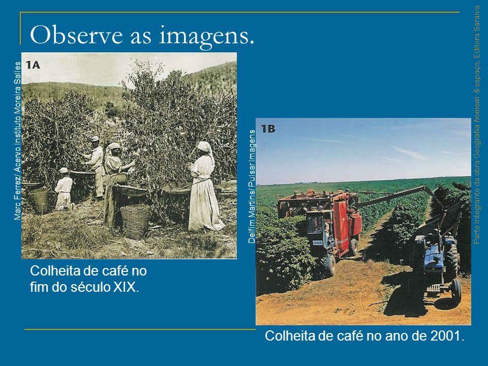 Observe as imagens. Colheita de café no fim do século XIX. Colheita de café no ano de 2001. Marc Ferrez/ Acervo Instituto Moreira Salles Delfim Martin